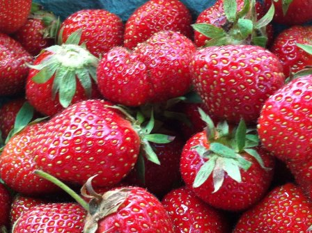 New York State Strawberries